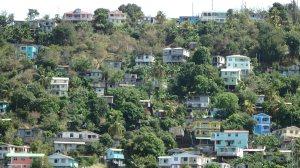 Dominica hillside scene
