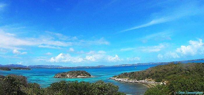 Antigua Bird Island