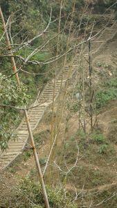 Sapa stairs