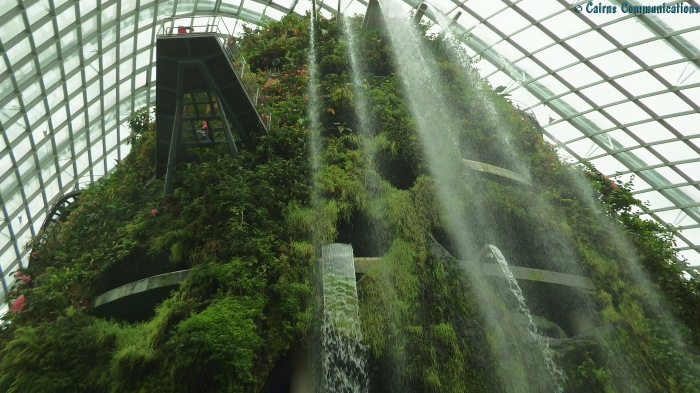 Singapore Cloud Forest