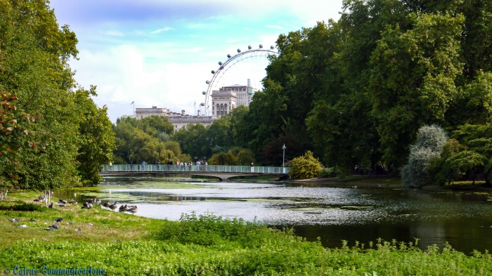 """I spy the London Eye..."" - the view from St James park"